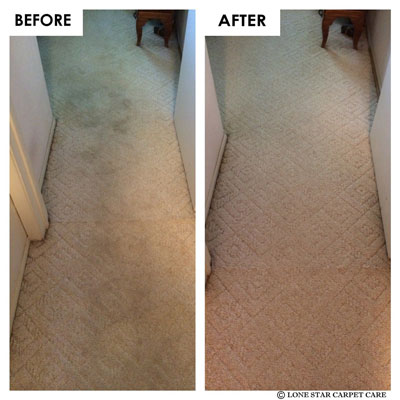 carpet cleaning san antonio texas lone star carpet care